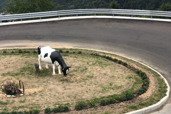 Fermi tutti: la settimana del lattiero caseario sul mercato Ue