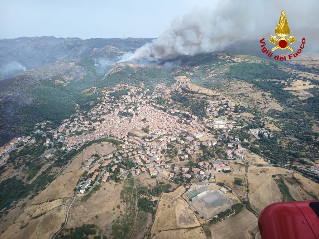 Incendi in Sardegna: fondo di solidarietà per i pastori dal Consorzio del Pecorino Romano
